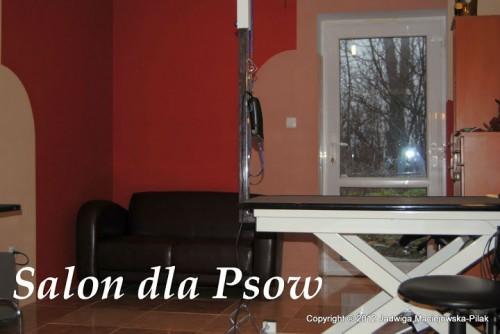 Strzyżenie i Pielęgnacja Psów w Biadaczu koło Kluczborka, opolskie