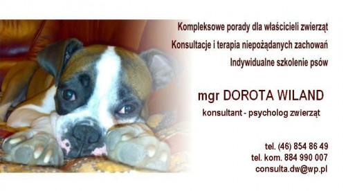 psycholog zwierząt