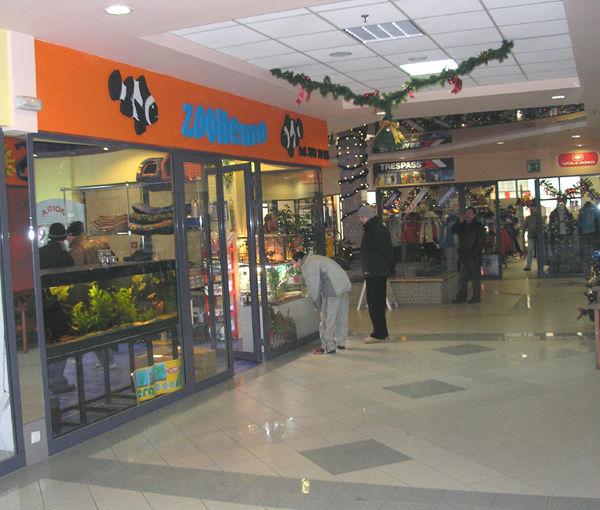 sklep Zoonemo w Legionowie przy ul.Piłsudskiego w Błękitnym Centrum
