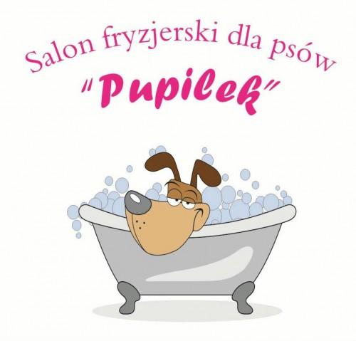 Salon fryzjerski dla psów PUPILEK !