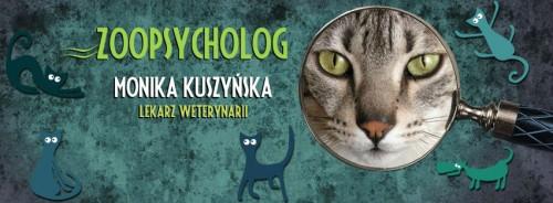 koci psycholog, behawiorysta, zoopsycholog Kraków