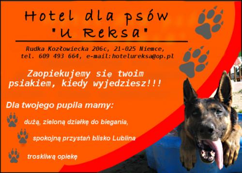 "Hotel dla psów ""U Reksa"""