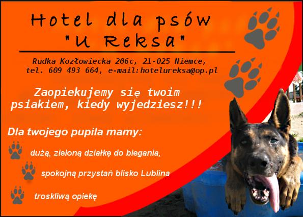 plakacik_czarny3-1