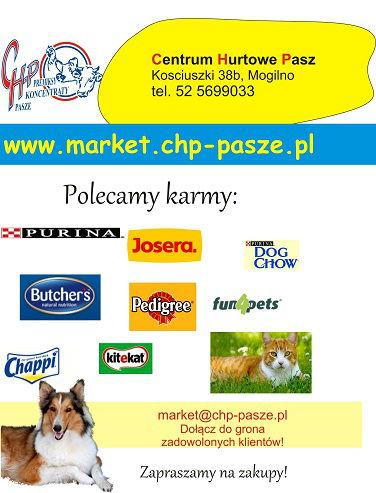 piesek-ulotka - zmiana market