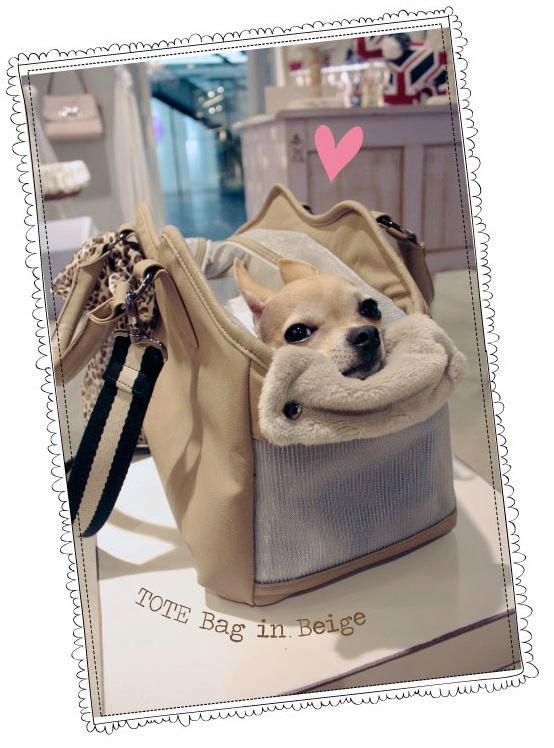 torba dla psa Louisdog