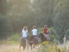 wyprawy terenowe
