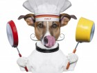 iStockphoto_Thinkstock_dog_chef-large