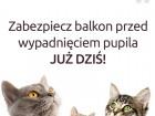 siatka dla kota, kocia siatka, siatki dla kotów, siatka na balkon dla kota