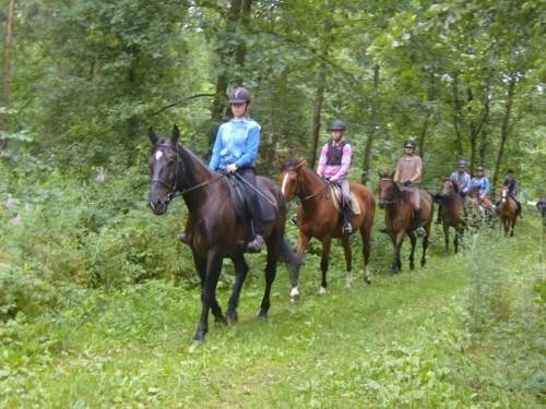 Obóz jeździecki lato 2015 na Mazowszu
